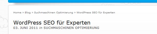 WordPress SEO für Experten